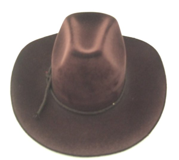 Brown Cowboy Hat /